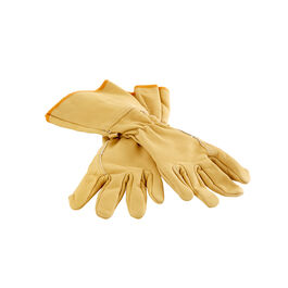 Leather Gloves, Size 10